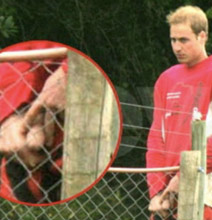 prince-william-peeing.png